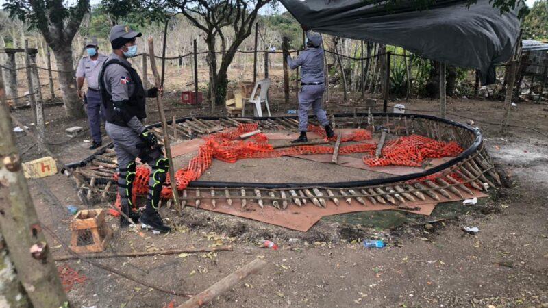 PN desmantela gallera clandestina en Hato Mayor