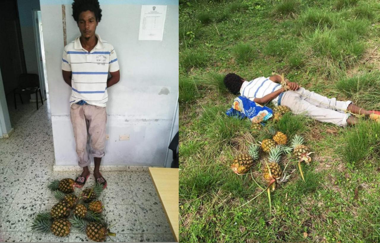Joven había sido apresado por robar piñas se escapó de cuartel policial en Hato Mayor
