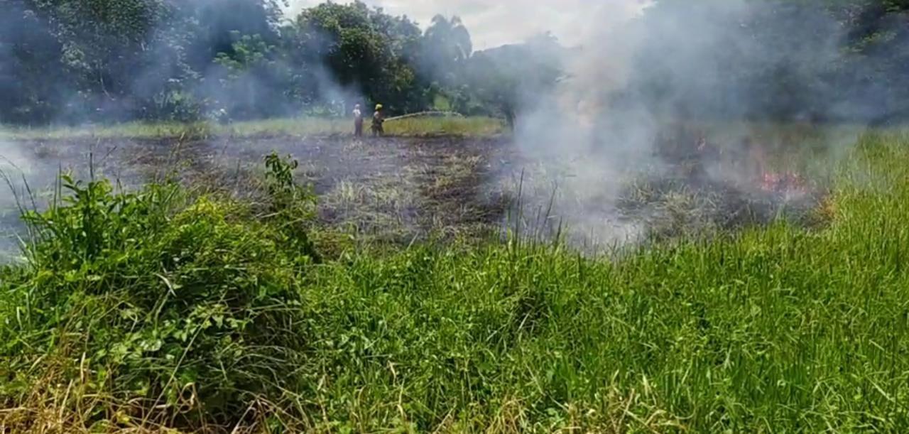 Incendio afectó terrenos en la carretera Hato Mayor-El Seibo
